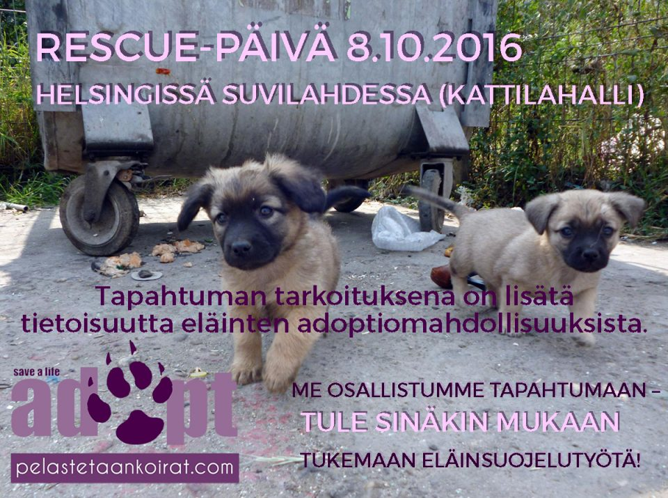 rescuepaiva081016